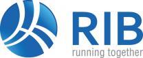 IT-Job RIB Information Technologies AG